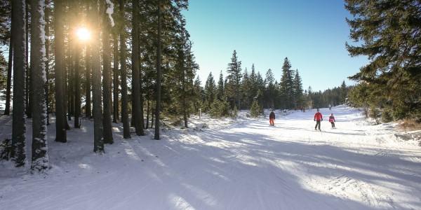 Pistenparadies Thüringer Wald- Winterurlaub in Oberhof