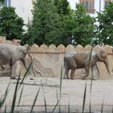 Zoo in Leipzig