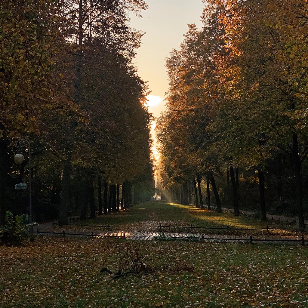Großer Tiergarten   Berlin